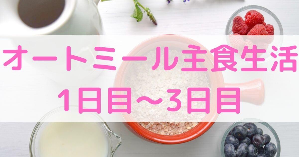 【ダイエット】オートミール主食生活 1日目~3日目【経験談】