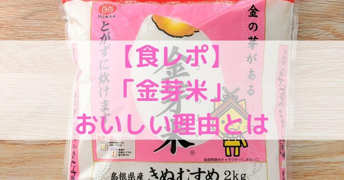 【食レポ】「金芽米」を食べてみた!おいしい理由も解説