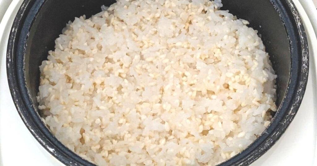 【手作り】甘酒の作り方&おすすめの甘酒作りセット【食レポ】